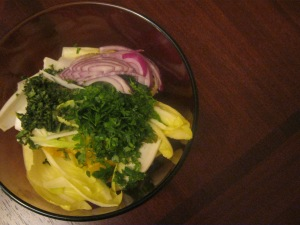 oranges, chicory, flat-leaf parsley, oregano, red onion
